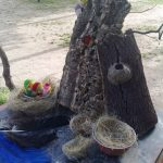 fotos taller nidos aula en la naturaleza (7)