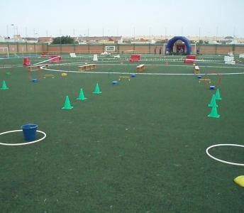 Planificacion de actividades escolares Multijuegos