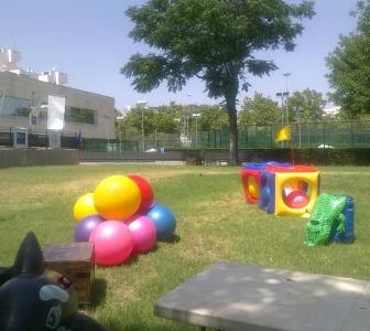 ¿Qué actividades para niños son las mejores para el verano?