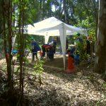 actividades con niños en la naturaleza